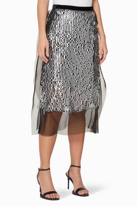 Silver Sequin & Embroidered Skirt