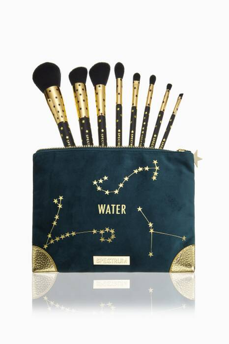 Water Zodiac Brush Collection