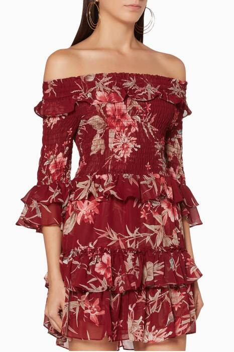 Burgundy Bird & Floral-Print Rima Dress